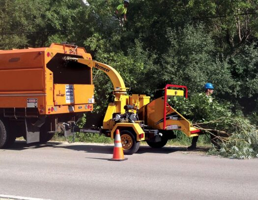 Commercial Tree Services-Brandon FL Tree Trimming and Stump Grinding Services-We Offer Tree Trimming Services, Tree Removal, Tree Pruning, Tree Cutting, Residential and Commercial Tree Trimming Services, Storm Damage, Emergency Tree Removal, Land Clearing, Tree Companies, Tree Care Service, Stump Grinding, and we're the Best Tree Trimming Company Near You Guaranteed!