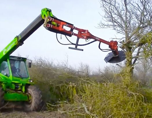 Tree Trimming Services-Brandon FL Tree Trimming and Stump Grinding Services-We Offer Tree Trimming Services, Tree Removal, Tree Pruning, Tree Cutting, Residential and Commercial Tree Trimming Services, Storm Damage, Emergency Tree Removal, Land Clearing, Tree Companies, Tree Care Service, Stump Grinding, and we're the Best Tree Trimming Company Near You Guaranteed!